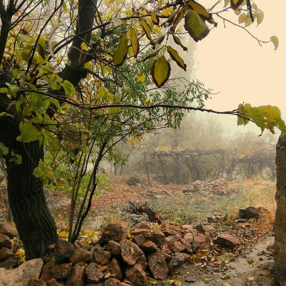 Natural Wonders in Kashan